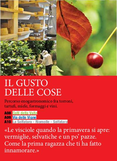 gusto_dellecose
